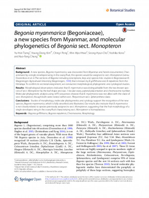 Begonia myanmarica (Begoniaceae), a new species from Myanmar, and molecular phylogenetics of Begonia sect. Monopteron